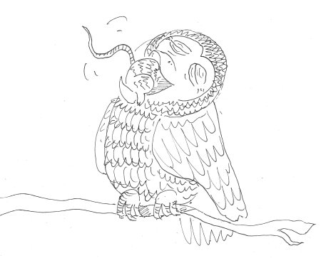 Otto owl who eats who page_crop_450